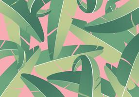 Tropiska Bananblad Bakgrund