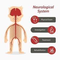 Neurologisches System und medizinisches Liniensymbol vektor
