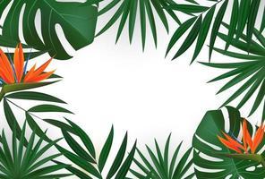 natürliches realistisches grünes Palmblatt mit Strelitzia-Blume. tropischer Hintergrund vektor