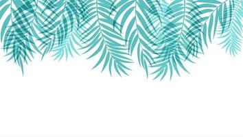 schöne Palme hinterlässt Schattenbildhintergrund vektor