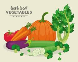 lokale frische Gemüsebeschriftung im Hintergrund beige vektor