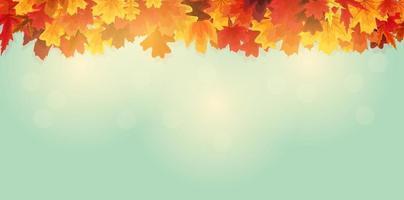 glänsande höstlöv banner bakgrund vektor