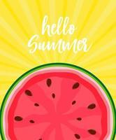 Hallo Sommerhintergrund vektor