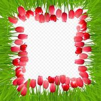 Blumenhintergrund mit Tulpen vektor