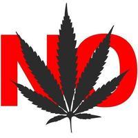 Cannabisblatt schwarz auf weißem Hintergrund Nr vektor