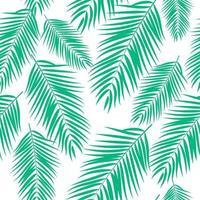 schöne Palme verlässt Silhouette. nahtlose Musterhintergrundvektorillustration vektor