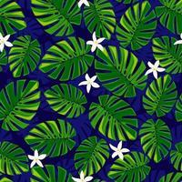 nahtlose Sommermuster Monstera und weiße Blumen auf blauem Hintergrund vektor