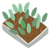 Garten Plantage Pflanzen Blätter wachsen vektor