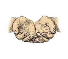 Hände Handflächen zusammen Skizze Betteln Hände Vektor-Illustration vektor