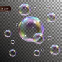 realistische Seifenblasen mit Regenbogenreflexionsset isolierte Vektorillustration vektor