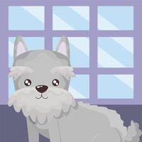 niedlicher kleiner Hund Schnauzer Haustier im Zimmer Haustier vektor