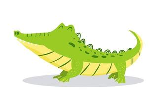Karikatur niedliches Krokodil lokalisiert auf weißem Hintergrund helle Vektorillustration für Kinderdesign zufrieden Alligator vektor