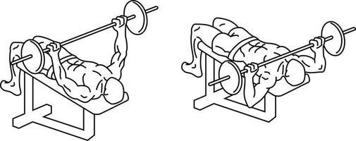 Bankdrücken Übungen und Training mit Gewichten vektor