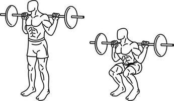Kniebeugenübungen und Training mit Gewichten vektor