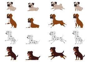 Mops Boxer Hund Dalmatiner und Rottweiler in verschiedenen Posen vektor
