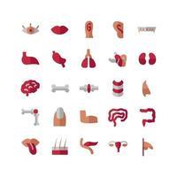 Menschliches Organ Icon Set Vektor flach für Website Mobile App Präsentation Social Media geeignet für Benutzeroberfläche und Benutzererfahrung
