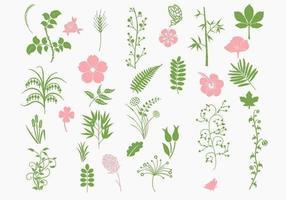 Rosa und grünes organisches vektorpaket