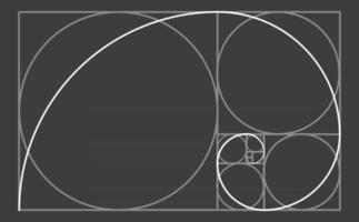 goldene Schnittkreise mit goldener Spiralschablone vektor