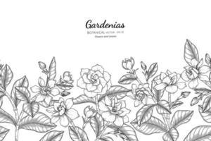 handgezeichnete Gardenien floral und Blatt nahtlose Muster vektor