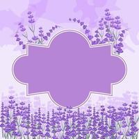 schöner Lavendelgarten gerahmter Hintergrund vektor