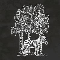 Zebra in Birkenholz handgezeichnete Retro-Stil Skizze Vintage Vector Illustration