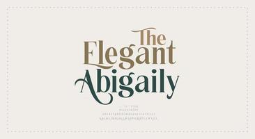 elegante Hochzeitsschrift vektor