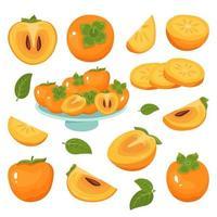 Persimone Icons Set, ganze Frucht, Hälfte, Scheiben, mit und ohne Samen vektor