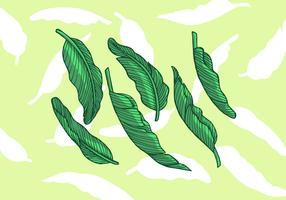 Bananenblatt-Vektor-Illustration