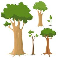 Baum-Sammlung vektor