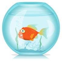 Guldfisk i akvarium vektor
