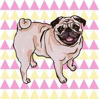 bunte Vektor-Illustration der Hunderasse Mops isoliert auf weißem Hintergrund vektor