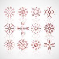 Olika vinter snöflingor sätta design vektor