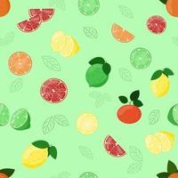 Zitrusfrüchte Muster. Zitrone, Mandarine, Limette und Grapefruitscheibe. vektor