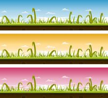 Gräs och gräsmatta