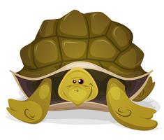 Gullig sköldpadda karaktär