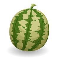 Wassermelone vektor