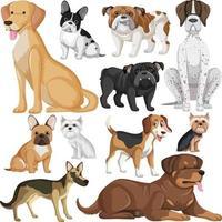 nahtloses Muster mit vielen verschiedenen süßen Hunden vektor