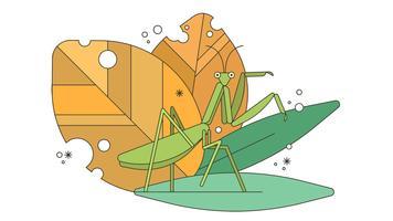 Bön Mantis Vector