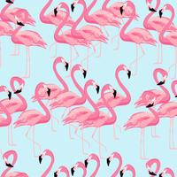 Tropisk flamingo fågel sömlös mönster bakgrund