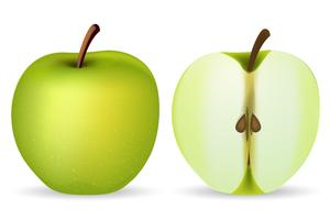 Grönt äpple vektor