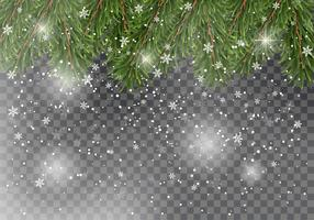 Julgran trädgrenar på transparent bakgrund med fallande snö. Nyårsdesign för kort, banderoller, flygblad, festaffischer, rubriker.