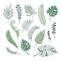 handritad färg grenar av tropiska växter blad isolerad på vit bakgrund. disposition silhuett vektorillustration. design för mönster, logotyp, mall, banner, affischer, inbjudan, gratulationskort vektor