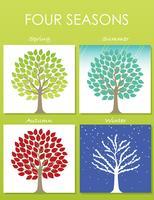Satz von vier Baumabbildungen in vier Jahreszeiten. vektor