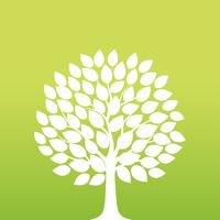 Frühjahr Baum-Vektor-Illustration.