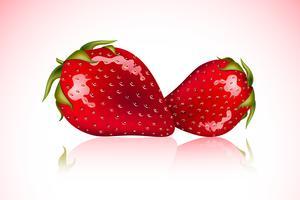 Färska jordgubbar vektor