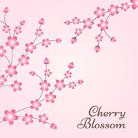 Cherry Blossom Spring Design Bakgrund vektor