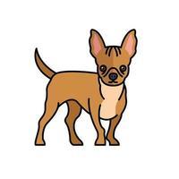 französische Bulldogge Haustier Maskottchen Rasse Charakter vektor