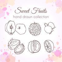 Sats med handdragen färsk frukt vektor