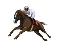 Pferderennen mit einem Jockey aus Aquarellspritzern, farbiger Zeichnung, realistisch, Reiten. Vektor-Illustration von Farben vektor
