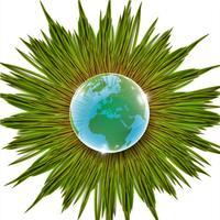 Gras- und Erdvektorillustration